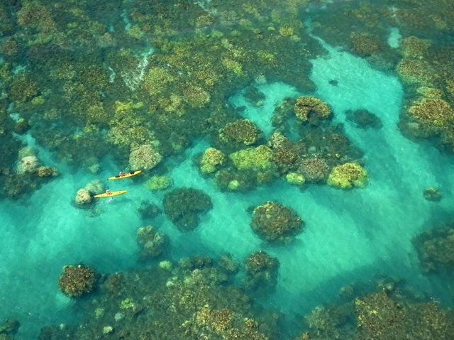 kayakers-coral-bloom-maui