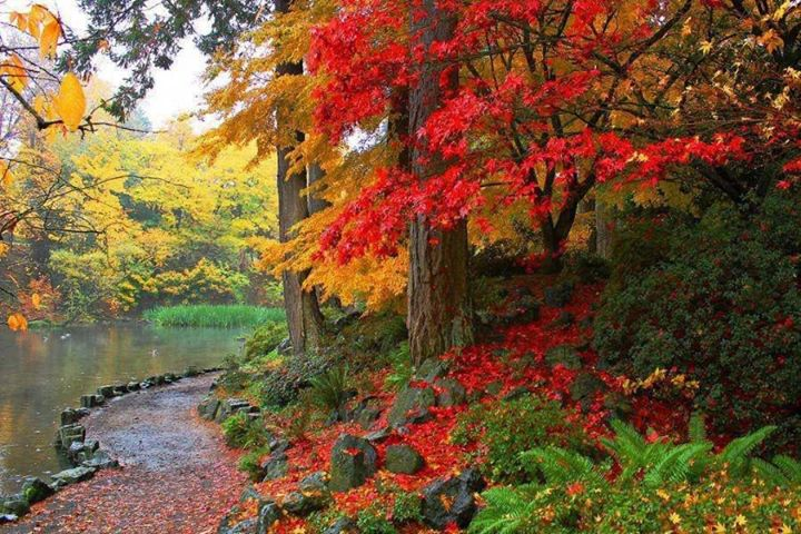 November 2013 check your premises for Crystal springs rhododendron garden