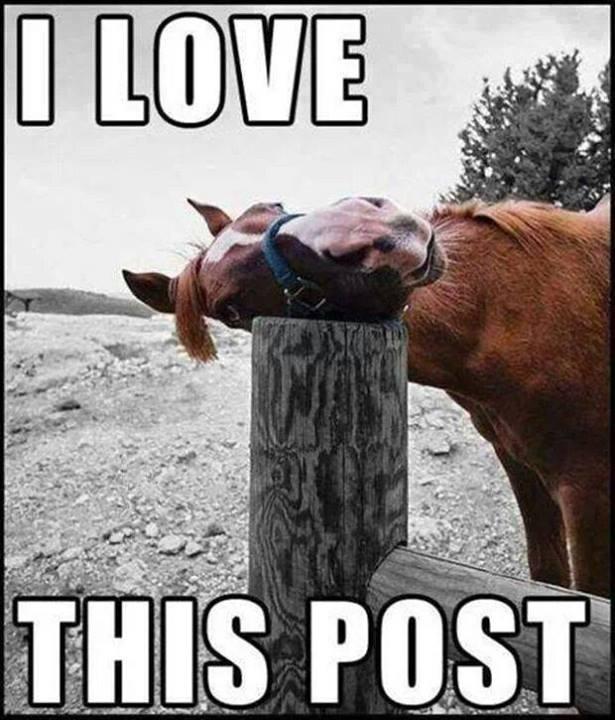 love this post
