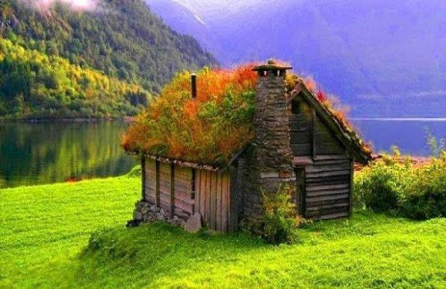 grass roof house-norway
