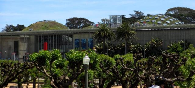 The California Academy of Sciences, with its distinctive living skylight roof.