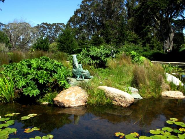 Pond and statues by the De Young Museum.