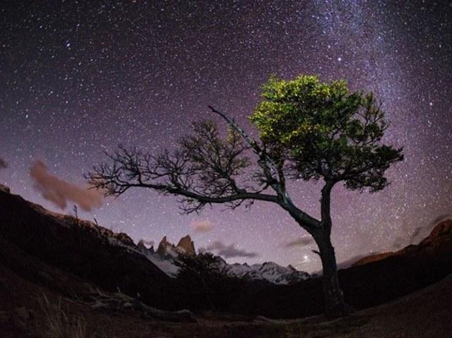 night sky-patagonia-max seigal