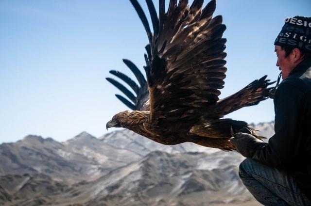 mongolia-eagle festival-Ahmed Zulkamal
