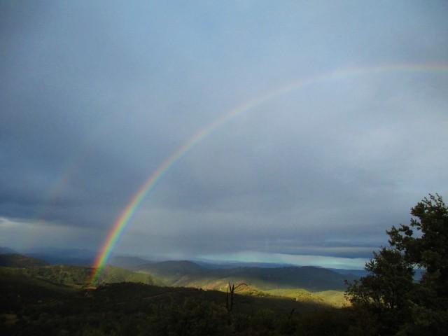 rainbow 160104