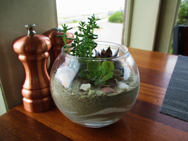 beach chalet-tabletop terrarium