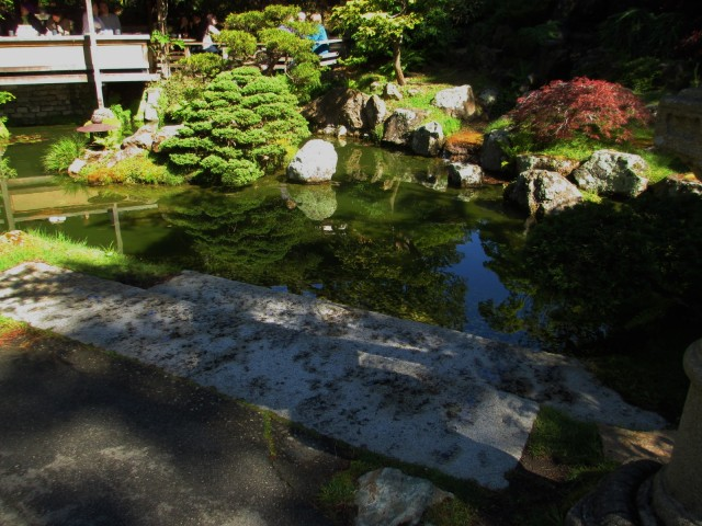 japanese garden-reflecting pond-cafe