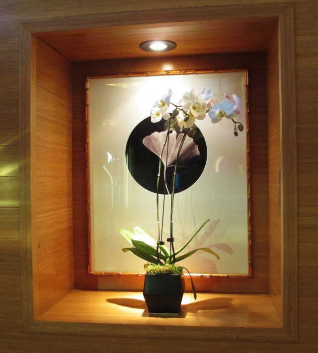 A beautifully-displayed orchid.