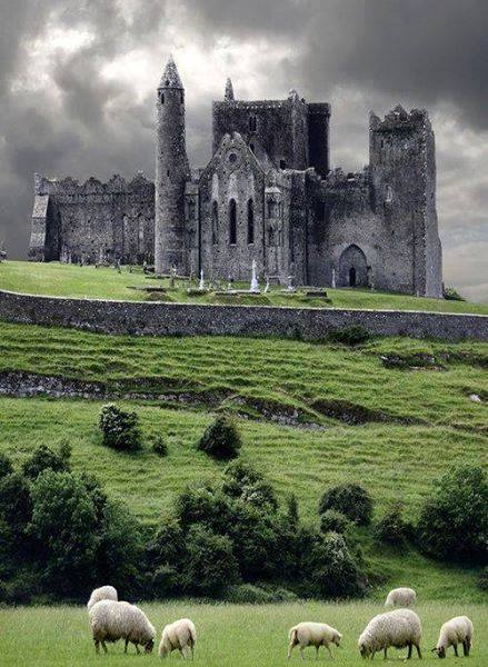 The Rock of Cashel-Cahir-County Tipperary-Ireland