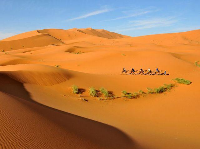 camel caravan-dunes-morocco-erg chebbi desert-sahara_rafel ziejewski