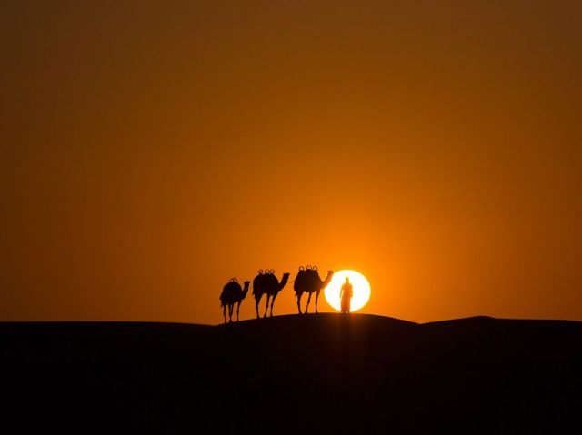 camel caravan-sunset-United Arab Emirates_Rogel Tura