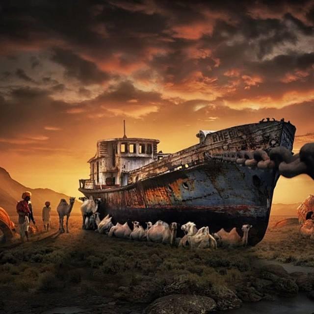 camels resting-shade-shipwreck_Erwyn Ardyan