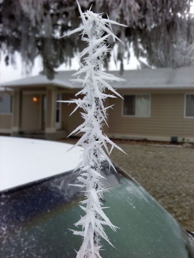 car antenna ice