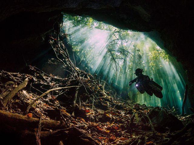 taj mahal cenote to bills hole-scuba diving-yucatan-mexico_Terry Steeley