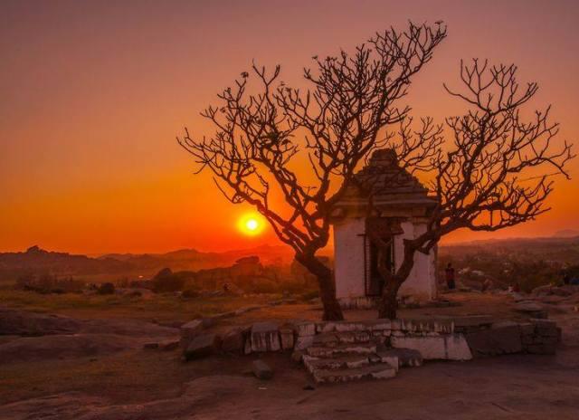 sun-tree-temple_vaibhav-mupadi
