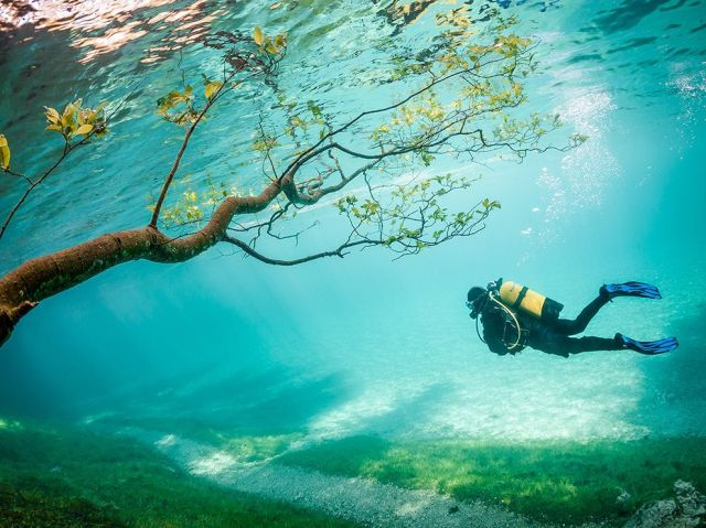 submerged-park-green-lake-6-to-30-ft-deep-spring-snowmelt-tragoss-austria_marc-henauer