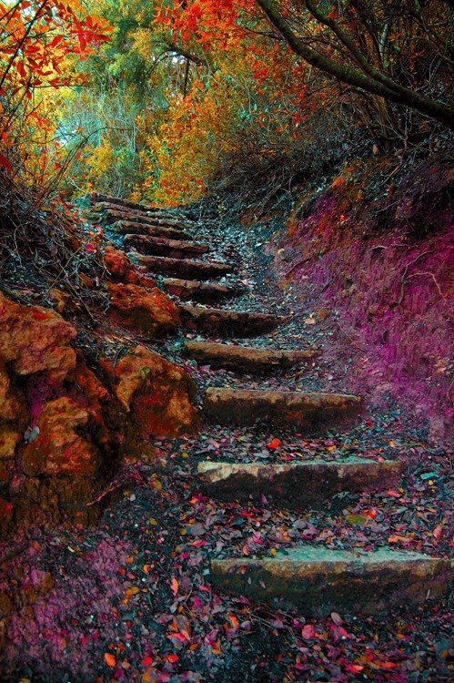 colorful-stairway