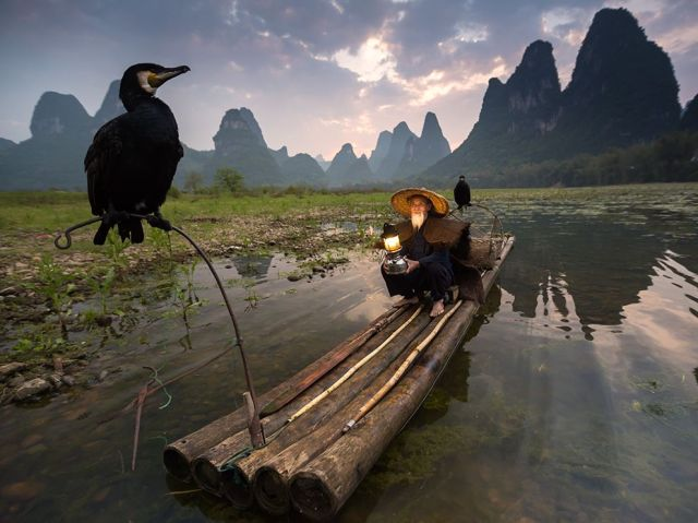 cormorant-fishing-li-river-xingping-guanxi-region-china_abderazak-tissoukai