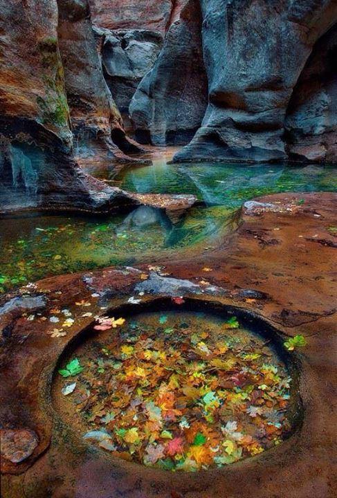 faerie-pool