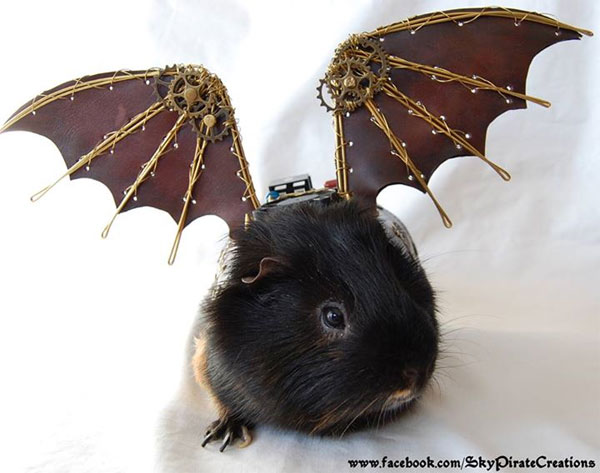 steampunk-guineapig-wings_skypirate-creations-on-etsy