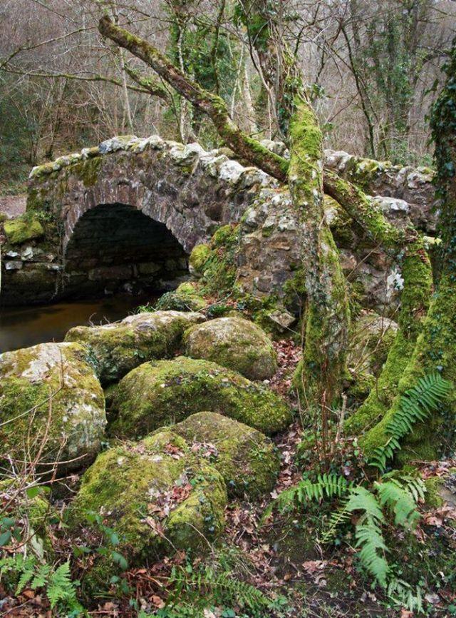 dartmoor-bridge-mark-lakeman