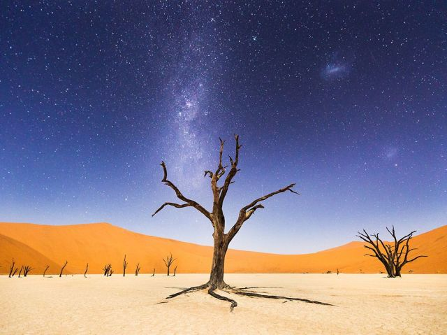 deadvlei-at-night-namibia-africa_-beth-mccarley