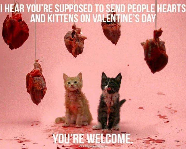 valentines-day-kittens-and-hearts