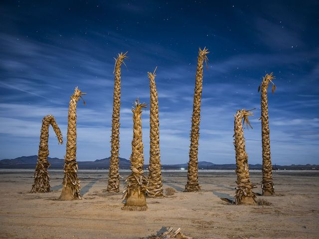 deserted-palms-moonlight-and-streetlight-lucerne-valley-california_bill-brewer
